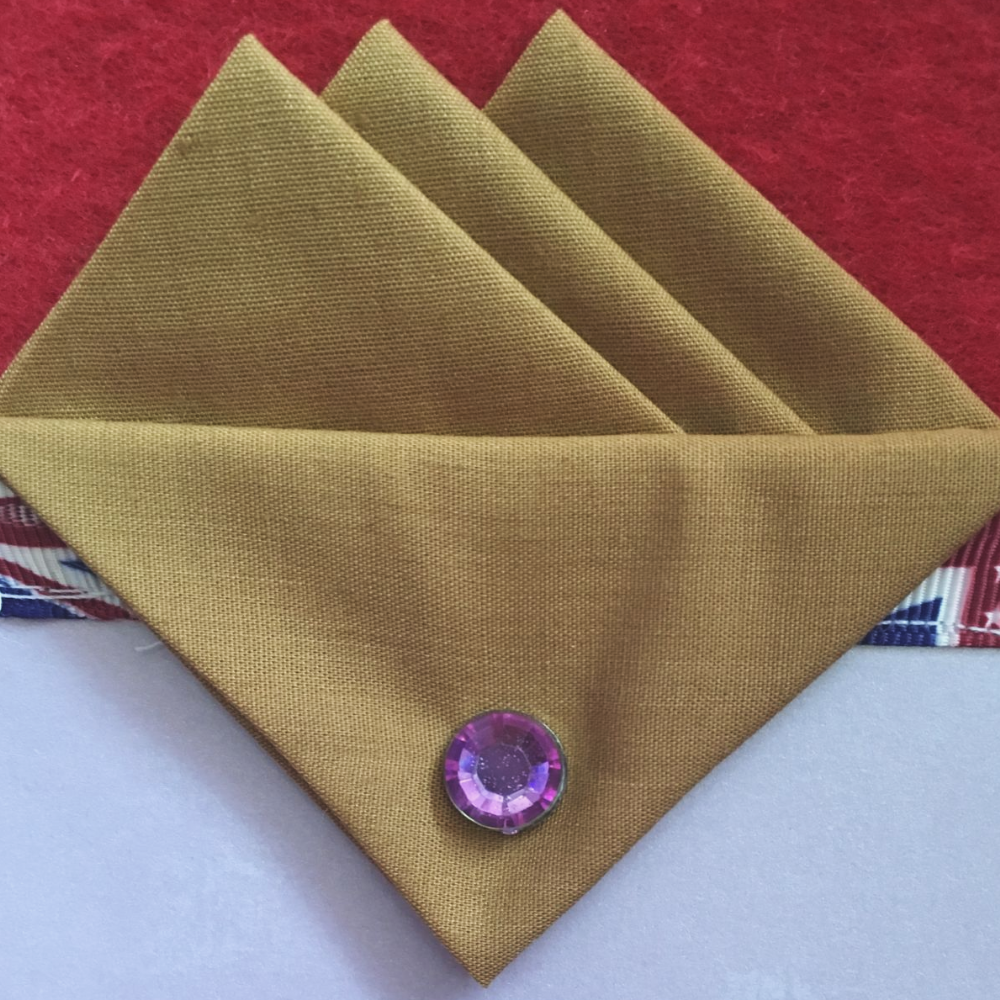 Brown (Golden) Three Point Pocket Hankie & Pin